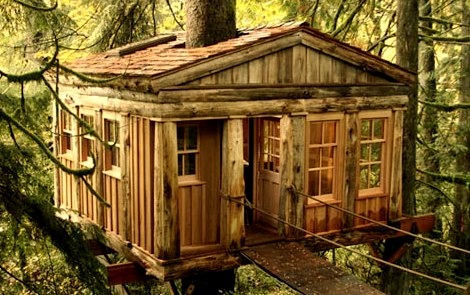 Temple of the Moon Treehouse Lodge, Seattle, Washington